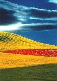 1990 - Spilimbergo Fotografia